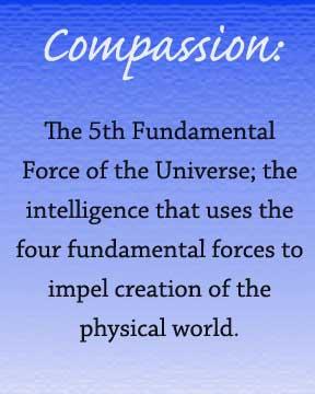 compassionWEB